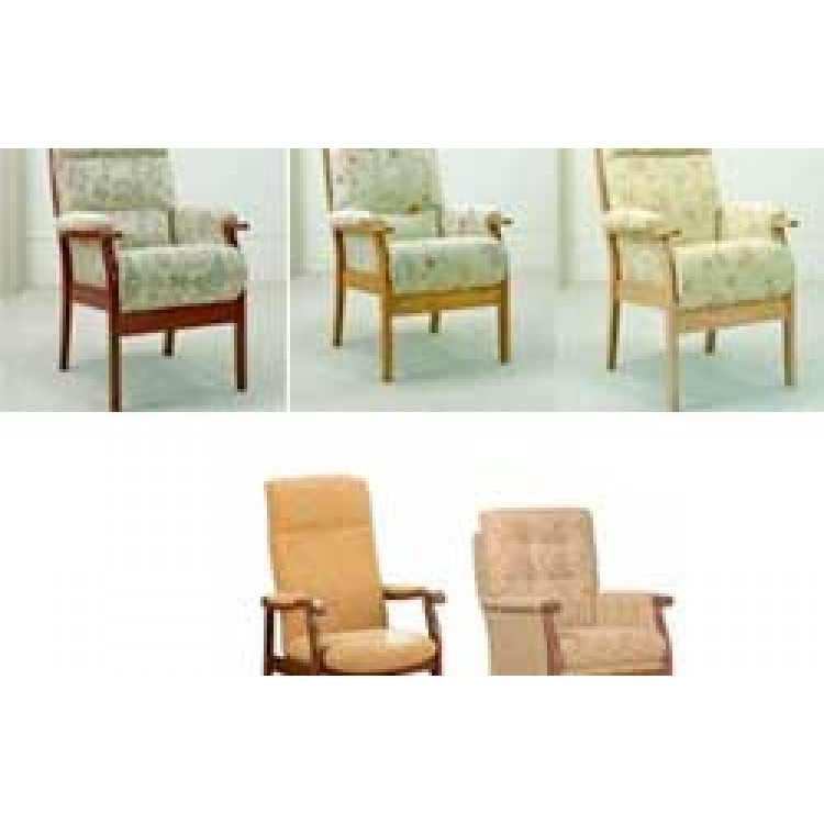 Posture chairs for Furniture zone albany